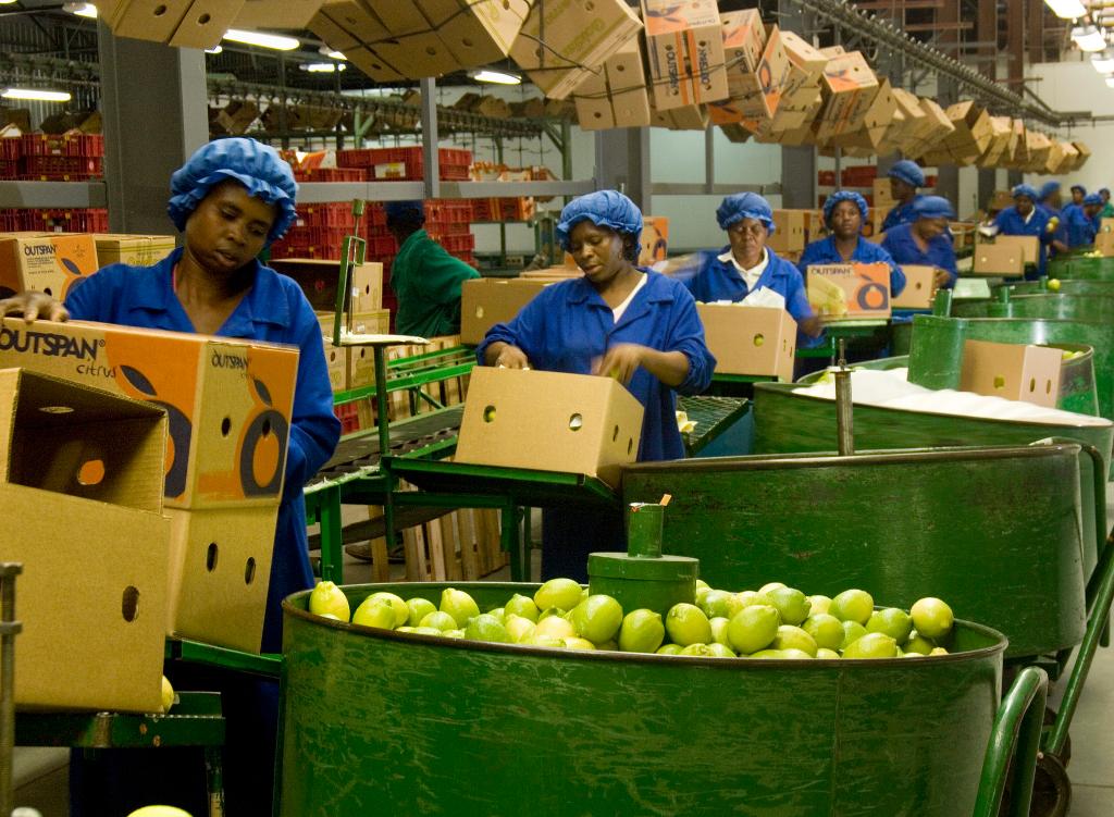Conditionnement de fruits à la ferme fruitière de Bavière Hoedspruit. L'usine de conditionnement de fruits conditionne principalement les citrons, les oranges et les mangues pour le marché d'exportation. (credits: Media Club / Flickr Creative Commons Attribution-ShareAlike 2.0 Generic (CC BY-SA 2.0))