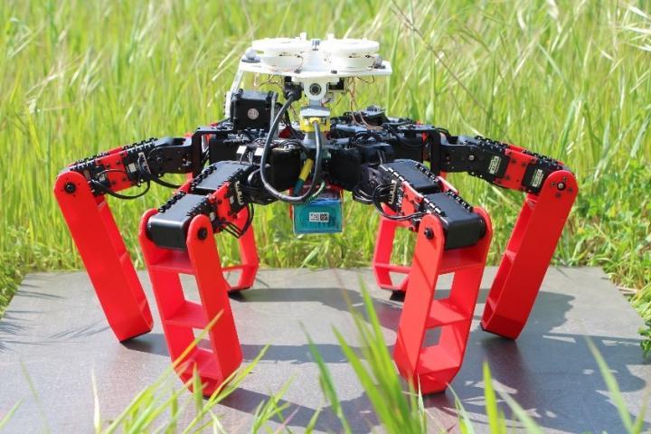 Antbot, le premier robot à pattes qui se déplace sans GPS. (crédit: Julien Dupeyroux, ISM (CNRS/AMU))