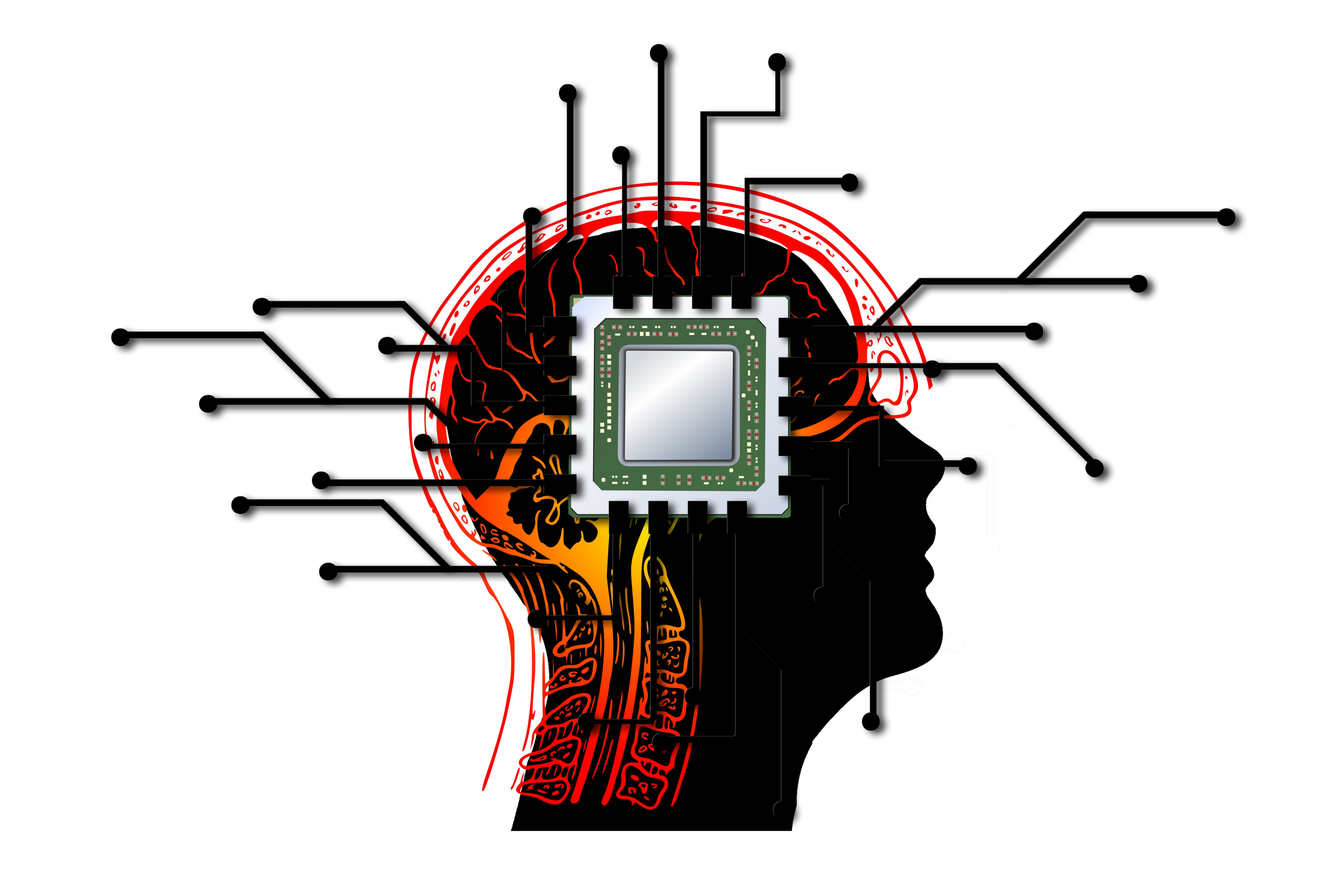 Intelligence Artificielle (Image by Gerd Altmann from Pixabay)