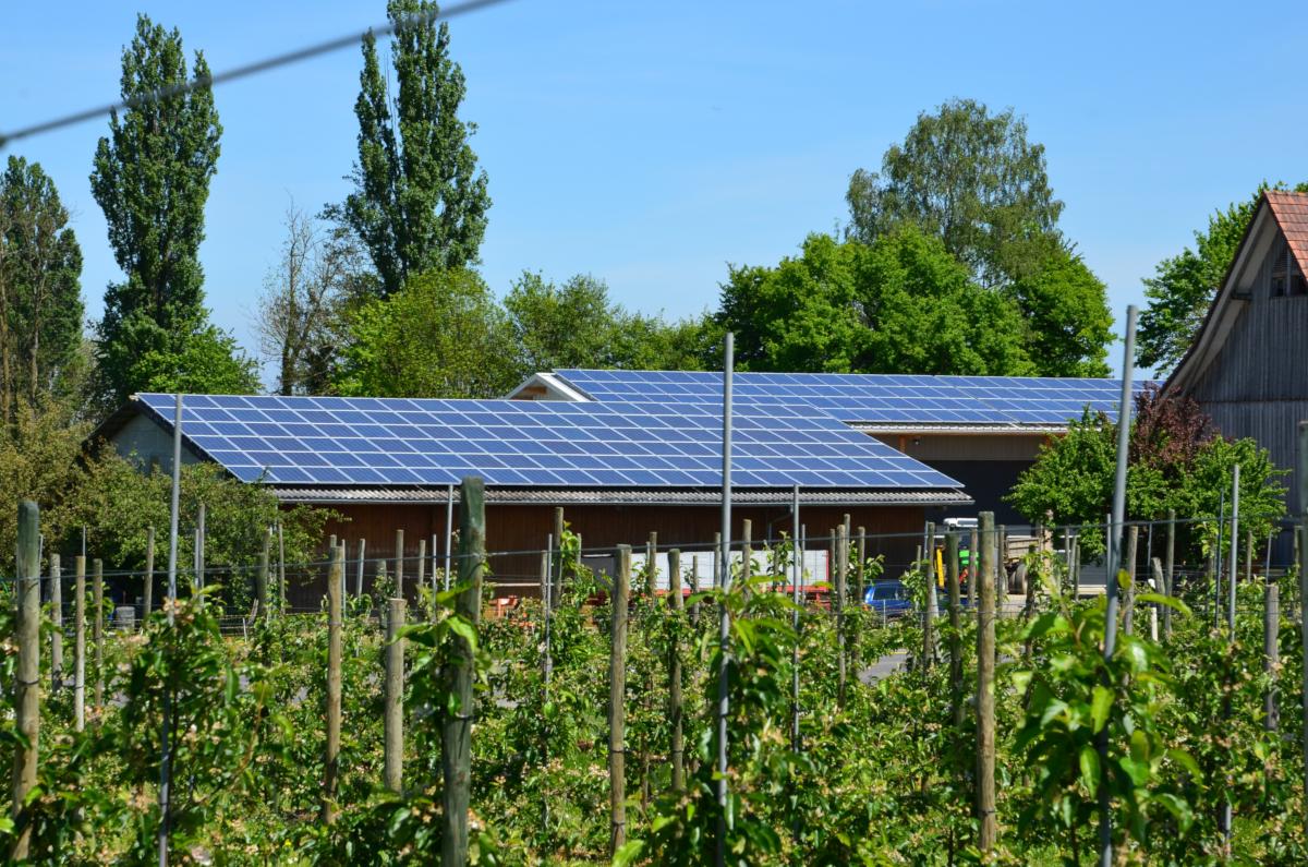 Farm with solar rooftop (Image by Hörbi Brüllmann from Pixabay)