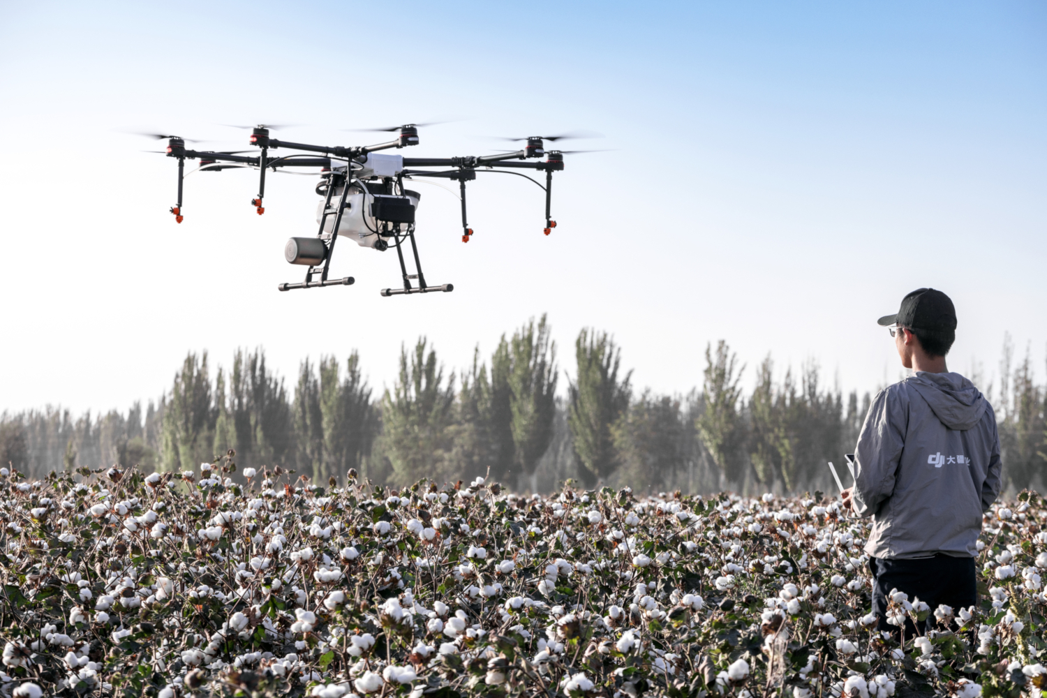 Spraying Drone flying over a cotton field (Image by DJI-Agras from Pixabay)
