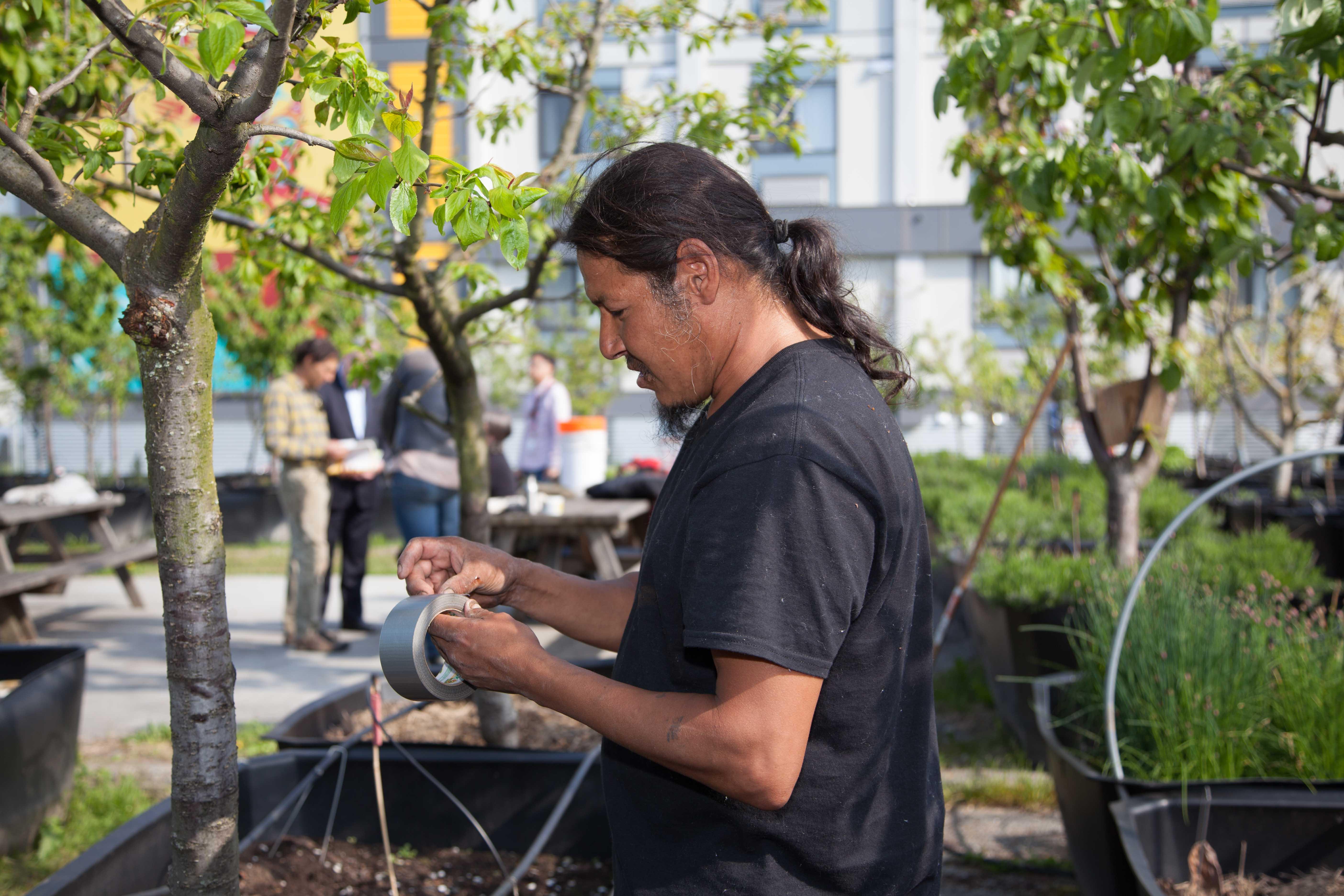 Les fermes Sole Food Street de Vancouver transforment les terrains urbains vacants en fermes de rue pour cultiver les fruits et légumes de qualité artisanale, disponibles dans les marchés de producteurs, les restaurants locaux et les points de vente au détail. La mission de Sole Food est de responsabiliser les individus aux ressources limitées en fournissant des emplois, une formation agricole et l'inclusion dans une communauté solidaire d'agriculteurs et d'amateurs d'aliment. (crédits: Province of British Columbia / Flickr Creative Commons Attribution - Pas d'Utilisation Commerciale - Pas de Modification 2.0 Générique (CC BY-NC-ND 2.0))