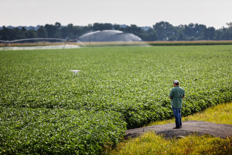 Drone survolant un champ de soja (crédits: United Soybean Board / Flickr Creative Commons Attribution 2.0 Générique (CC BY 2.0))