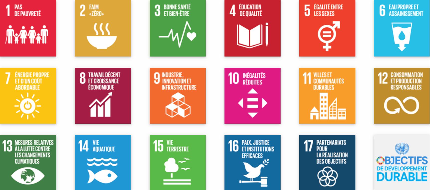 Les Objectifs de développement durable (crédits: ONU)