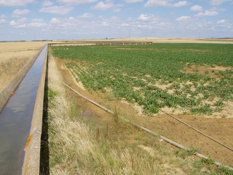 Canal d'irrigation en Espagne (crédits:  François Molle / Water Alternatives / Flickr Creative Commons Attribution - Pas d'Utilisation Commerciale 2.0 Générique (CC BY-NC 2.0))