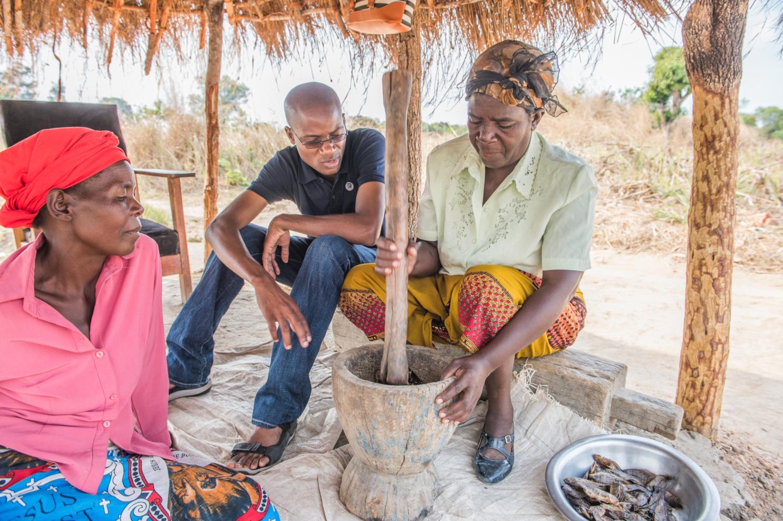 Emmanuel Chanda de Self Help Africa (au centre) travaille avec Beatrice Mulenga (à gauche) et Foster Mpundu (à droite) dans la production de poudres de poisson riches en nutriments qui sont ensuite ajoutées aux plats locaux. Cela fait partie d'une initiative du Projet FIDA-Université McGIll sur le renforcement des capacités des acteurs locaux sur la chaîne de valeur agroalimentaire sensible à la nutrition en Zambie et au Malawi », mise en œuvre par WorldFish. Le programme vise à améliorer les méthodes de production et de transformation de divers aliments riches en nutriments, en particulier les légumes à feuilles vert foncé, les haricots et le poisson. (crédits: Chosa Mweemba / WorldFish / Flickr Creative Commons Attribution - Pas d'Utilisation Commerciale - Pas de Modification 2.0 Générique (CC BY-NC-ND 2.0))